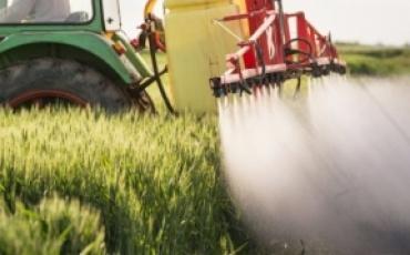 До уваги аграріїв: ЄС заборонив використання ЗЗР із вмістом активних речовини на основі хлорпірифосу та хлорпірифос-метилу